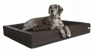DoggyBed Orthopädisches Hundebett Comfort Style