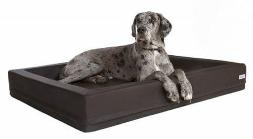 Darin fühlt sich der Vierbeiner gesund – Orthopädische DoggyBed