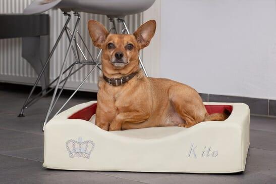 Orthopädisches Hundebettchen