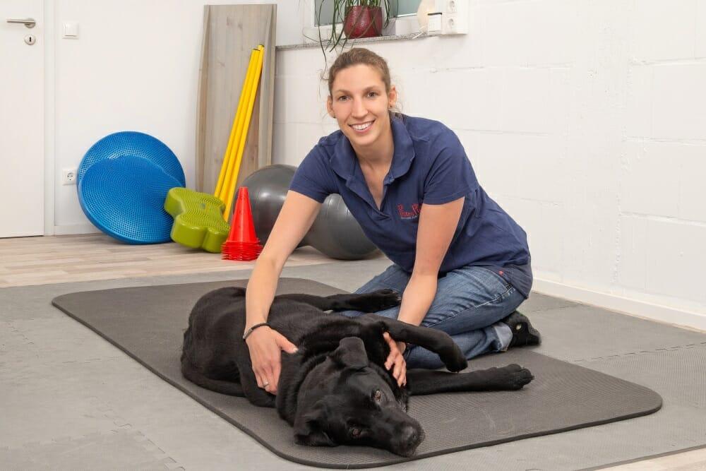 Die Tierphysiotherapie